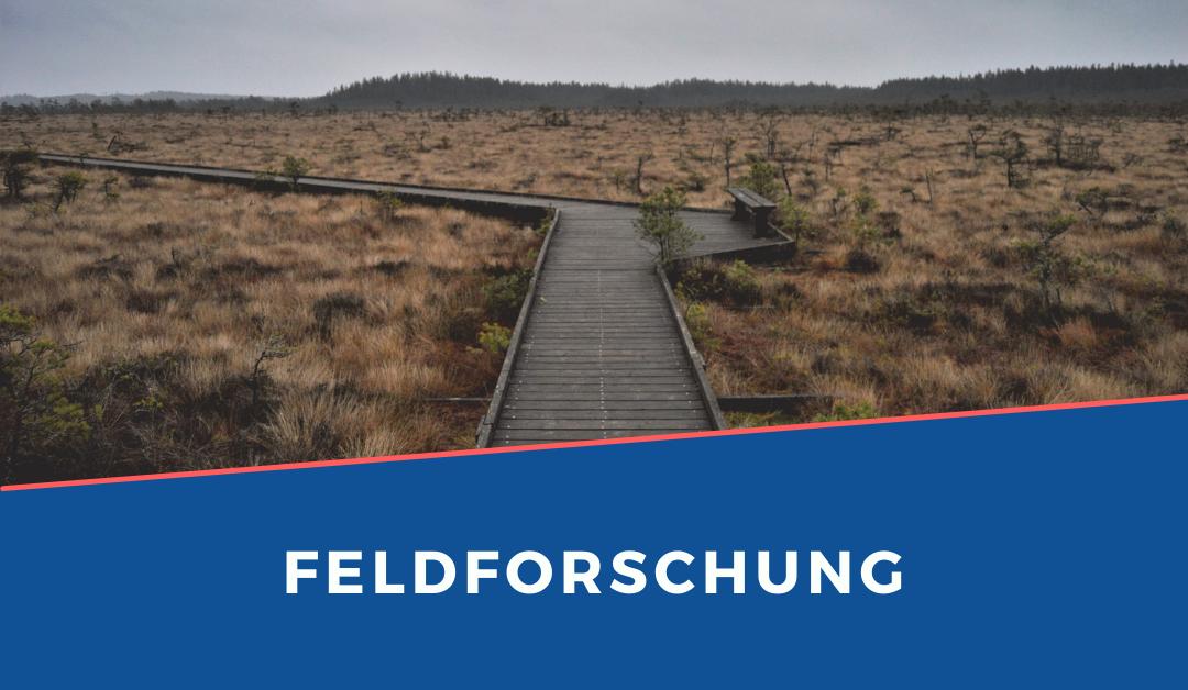 Feldforschung – Methoden, Beispiele & Vorgehen